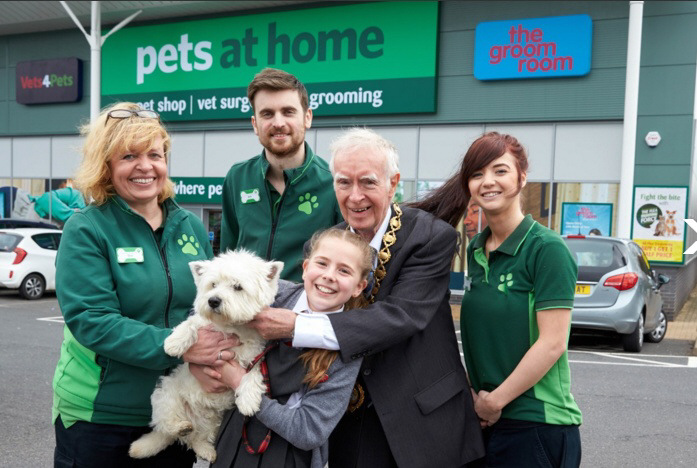 Pets At Home Are Running Free Workshops In Bromsgrove The Bromsgrove Standard